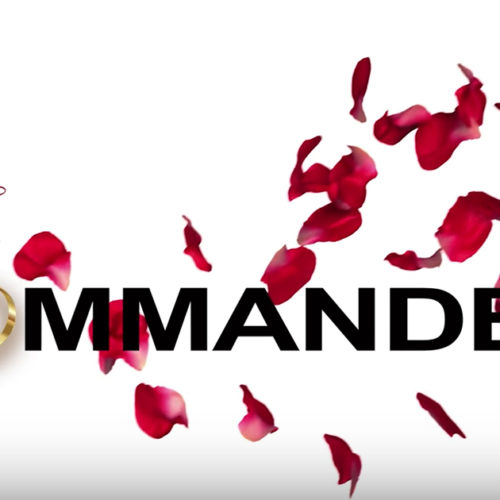 handmaidmashup_lead